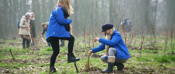 Partnership met Trees for All
