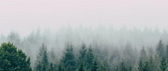 Klimaatweb Kennismarkt 2021 – De transitie naar een klimaatneutrale samenleving
